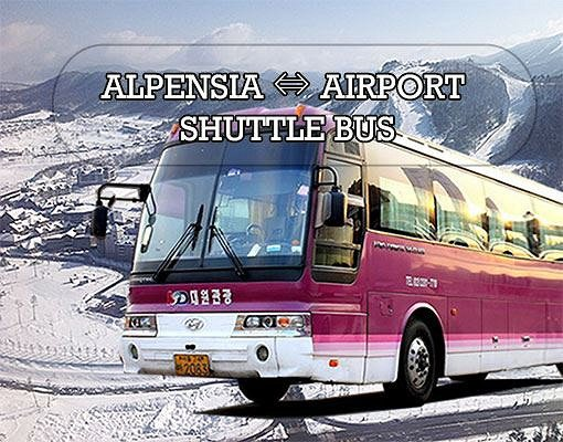 [Purple Bus] Incheon Airport to/from Alpensia Resort Shuttle Bus