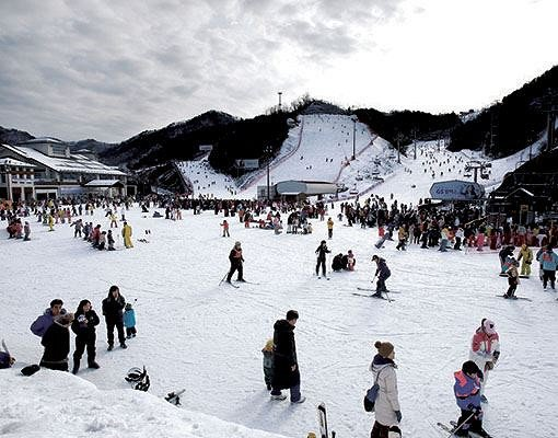 [Dec 1 - Feb 28] Nami Island & Elysian Gangchon Ski Resort Shuttle Bus Package_6