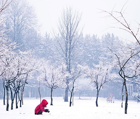 [Dec 1 - Feb 28] Nami Island & Elysian Gangchon Ski Resort Shuttle Bus Package_12