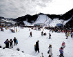 [Dec 1 - Feb 28] Nami Island & Elysian Gangchon Ski Resort Shuttle Bus Package_thumb_6