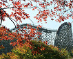 Everland Discount Ticket_thumb_7