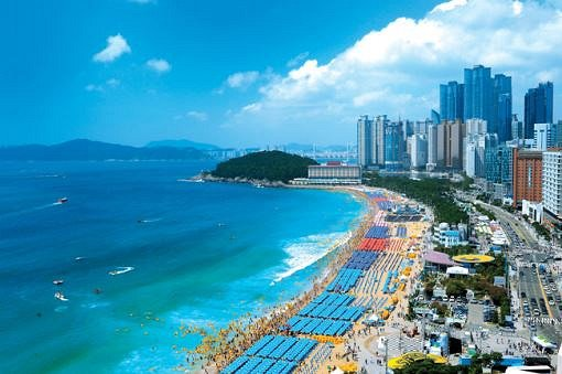 [KTX Train + City tour] Busan One Day Trip Package