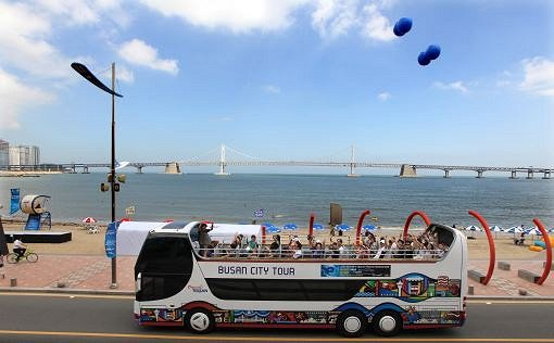 Busan City Tour Bus – Loop Tours