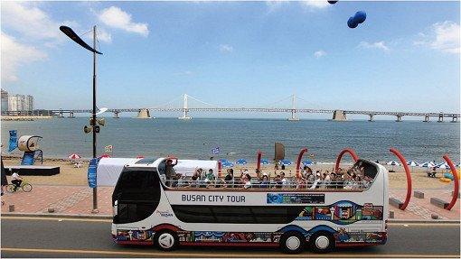 Busan City Tour Bus – Loop Tours_51