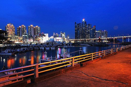 Busan City Tour Bus – Night View Tour_21