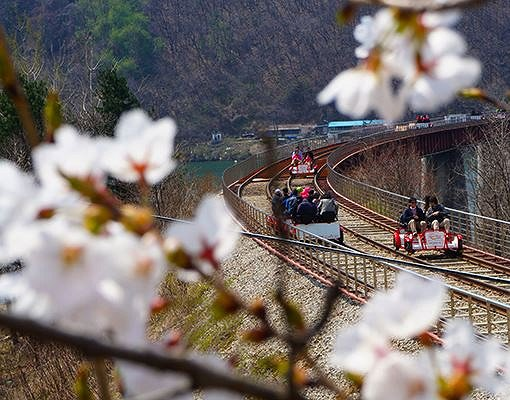 Gapyeong Rail Bike Reservation_2