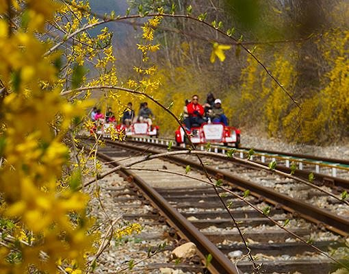 Gapyeong Rail Bike Reservation_3