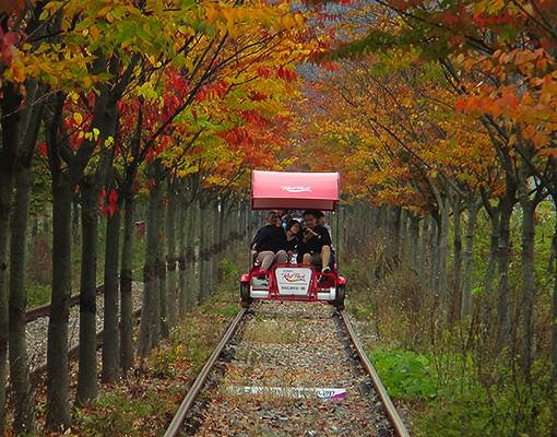 Gapyeong Rail Bike Reservation_1