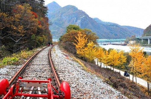 Gapyeong Rail Bike Reservation_7