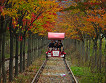 Gapyeong Rail Bike Reservation_thumb_1
