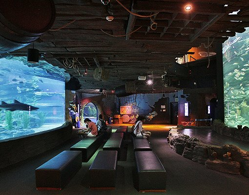 Busan Aquarium Discount Ticket_12