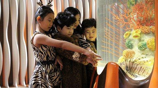 Busan Sea Life Aquarium Discount Ticket_17