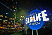 Busan Sea Life Aquarium Discount Ticket_thumb_10