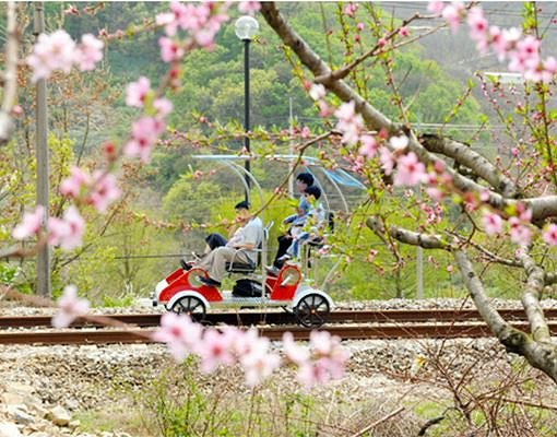 Yangpyeong Rail Bike Reservation