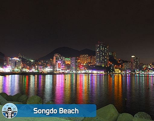 Busan City Night View Walking Tour_4