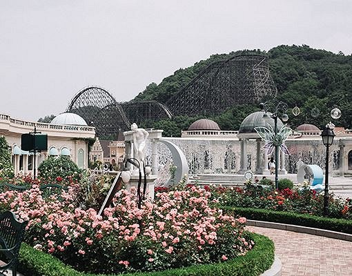 Everland One Day Ticket & Shuttle Bus Package