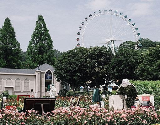 Everland One Day Ticket & Shuttle Bus Package_10