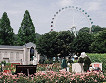Everland One Day Ticket & Shuttle Bus Package_thumb_10