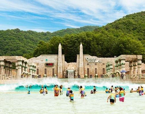Ocean World Korea Discount Ticket_1