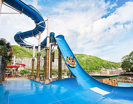 Ocean World Korea Discount Ticket_6