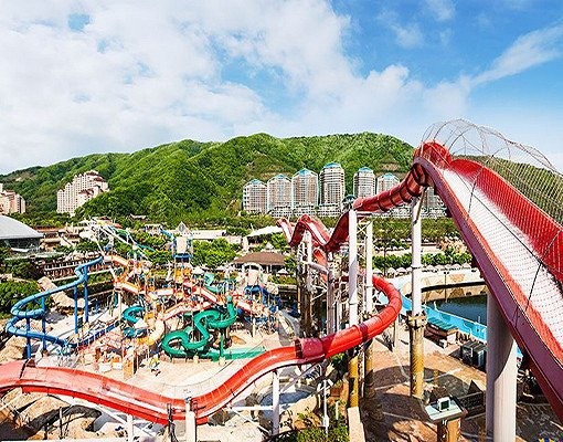 Ocean World Korea Discount Ticket_4