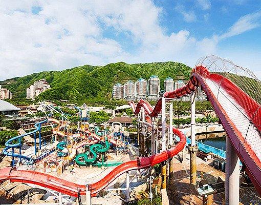 Ocean World Korea Discount Ticket_2