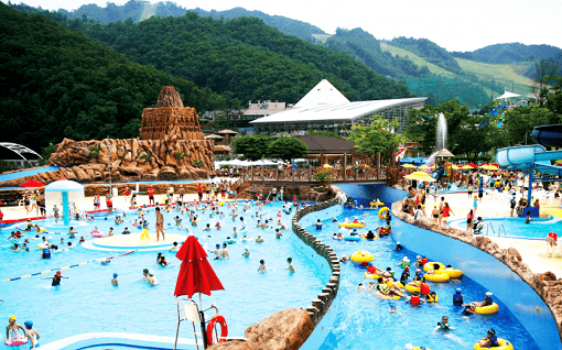 Ocean World Korea Discount Ticket_19