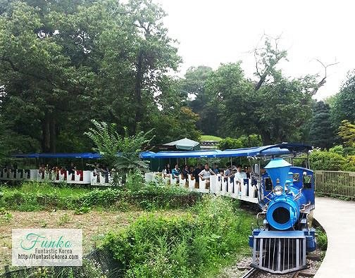 4 In A Day! Petite France & Nami Island & Rail Bike & Garden of Morning Calm Package_9