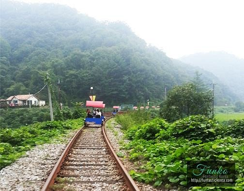 4 In A Day! Petite France & Nami Island & Rail Bike & Garden of Morning Calm Package_10