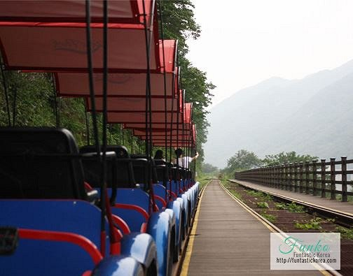 4 In A Day! Petite France & Nami Island & Rail Bike & Garden of Morning Calm Package_11
