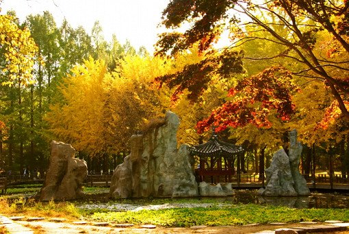 4 In A Day! Petite France & Nami Island & Rail Bike & Garden of Morning Calm Package_0