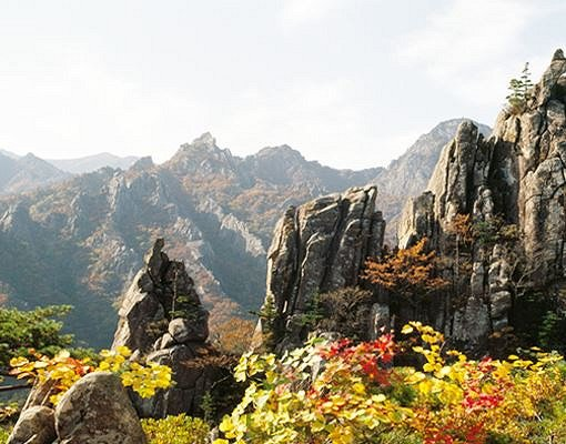 [Oct 16-Oct 30] Seorak Mountain Autumn Foliage Shuttle Bus One Day Tour