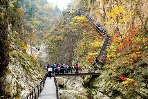 [Oct 16 - Oct 30] Seorak Mountain Autumn Foliage Shuttle Bus One Day Tour_9