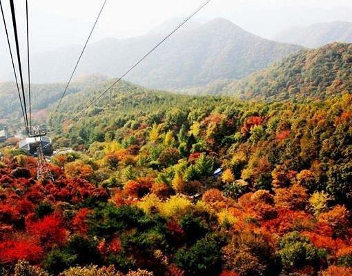 [Oct 23-Nov 4] Daedun Mountain Autumn Foliage Shuttle Bus One Day Tour