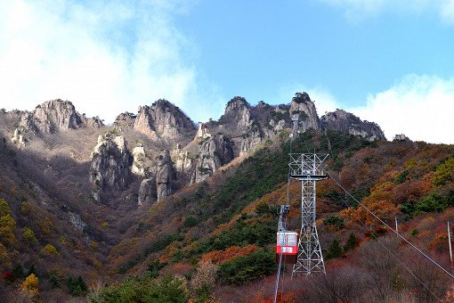 [Oct 23 - Nov 4] Daedun Mountain Autumn Foliage Shuttle Bus One Day Tour_6