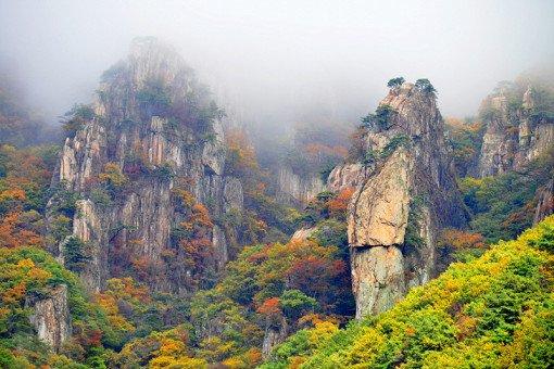 [Oct 23 - Nov 4] Daedun Mountain Autumn Foliage Shuttle Bus One Day Tour_0