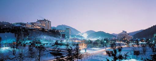 [Purple Bus] Seoul to/from Yongpyong Resort Shuttle Bus_1