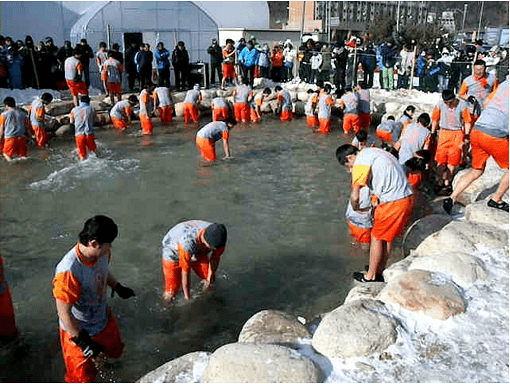 [From Alpensia/Yongpyong] Pyeongchang Trout Ice Fishing Festival Half Day Tour_2