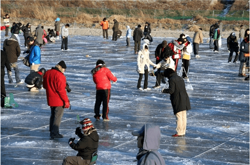[From Alpensia/Yongpyong] Pyeongchang Trout Ice Fishing Festival Half Day Tour_3