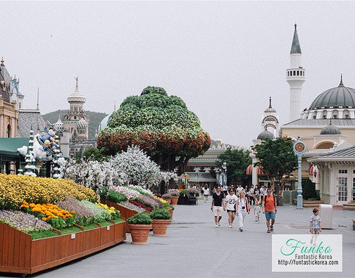 Everland Shuttle Bus & Discount Ticket Package : Gangnam
