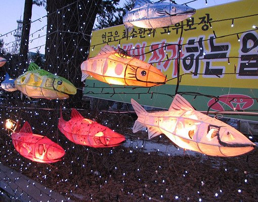 [Jan 5 - Jan 27] Hwacheon Sancheoneo Ice Fishing Festival Shuttle Bus Package_2