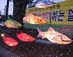 Hwacheon Sancheoneo Ice Fishing Festival Shuttle Bus Ticket_thumb_2