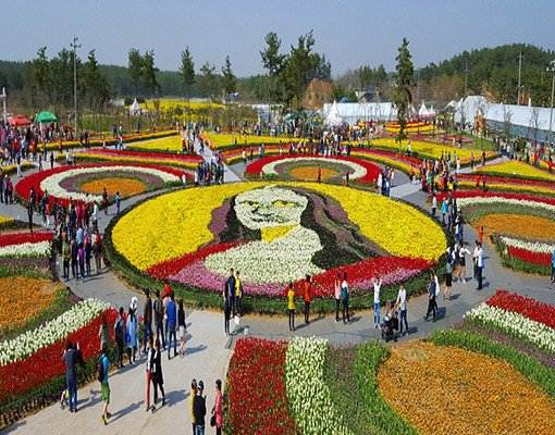 Taean Tulip Festival and Strawberry picking_9