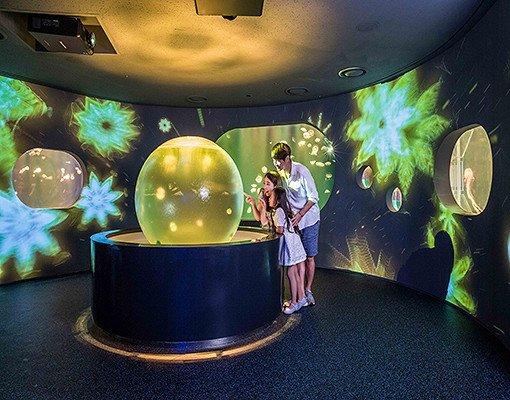 Hanwha Aqua Planet 63 & 63 Sky Art Observatory Discount Ticket_22