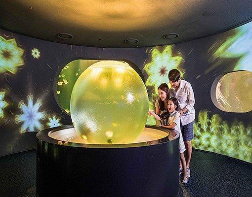 Hanwha Aqua Planet 63 & 63 Sky Art Observatory Discount Ticket_7