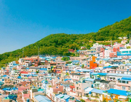 [From Busan] Busan One day Tourist Attraction Bus Tour (Cultural)_0