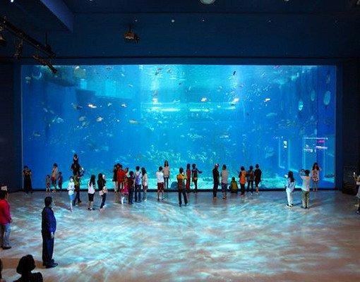 Jeju Aqua Planet Discount Ticket_8