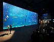 Jeju Aqua Planet Discount Ticket_thumb_4