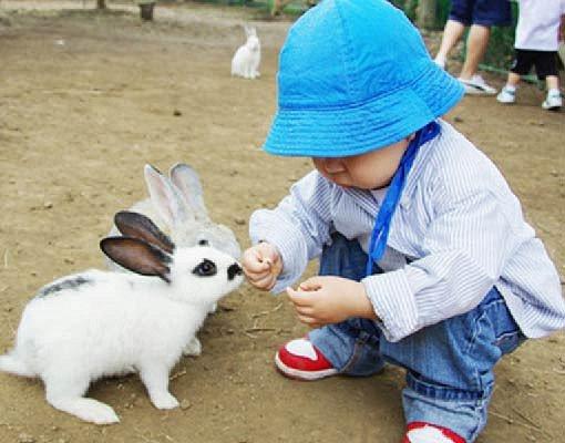 Jeju Hueree Natural Park Ticket_1