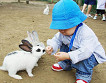 Jeju Hueree Natural Park Ticket_thumb_1